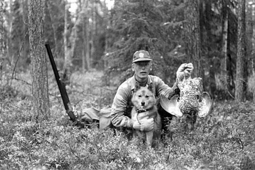 Maatiasispystykorvan koppelo © Eero Niku-Paavo