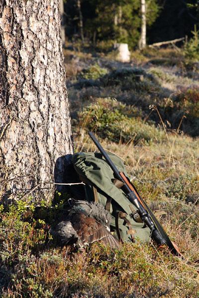 Savukoski 2010 © Eero Niku-Paavo