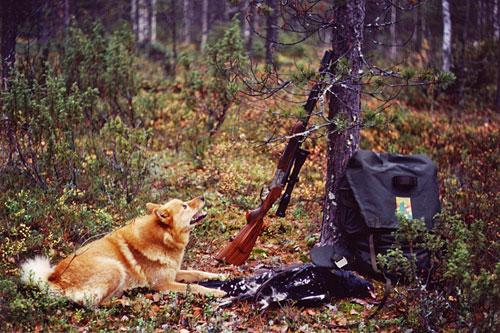 2001 © Eero Niku-Paavo