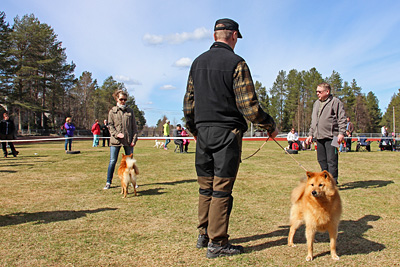 Pietu ja Pipsa Posiolla © Eero Niku-Paavo 2016